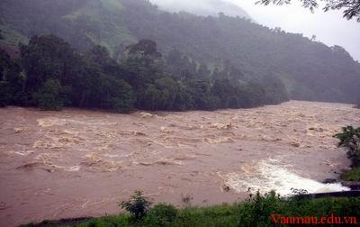 Tả dòng sông mùa lũ