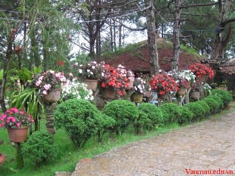 edss6 - Tả vườn hoa gần nơi em ở