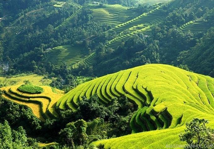 Cảm nhận của em về bài thơ Việt Bắc của nhà thơ Tố Hữu hay nhất