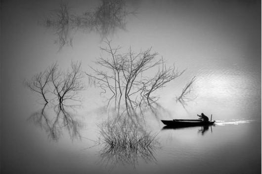 phan tich bai tho thu dieu - Phân tích bài thơ Thu điếu của Nguyễn Khuyến (Có dàn ý chi tiết)