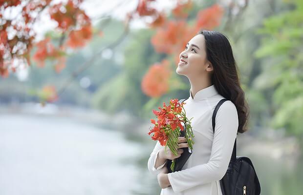 7212 1494911290056 1016 - Cảm nhận cùa em về một bài thơ xuân đặc biệt - Bài Nguyên tiêu (Rằm tháng giêng) của Hồ Chí Minh