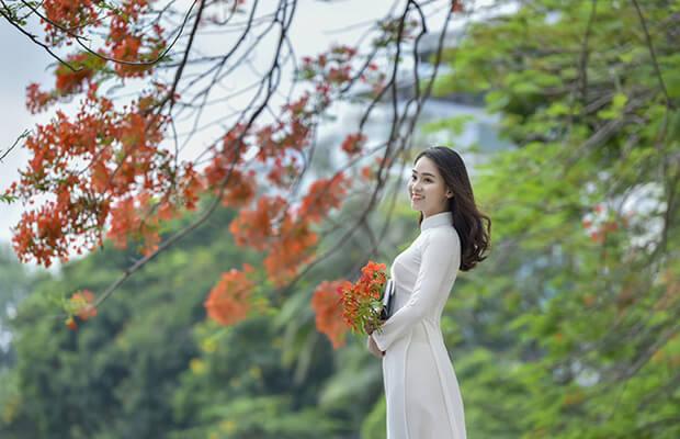 7225 1494911290059 1017 - Cảm nhận về bài thơ Cảnh khuya của Hồ Chí Minh